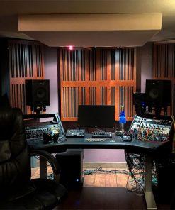 Will Bellasteros Bad Monkey Music Productions GIK Acoustics Alpha Pro 1D Mahogany